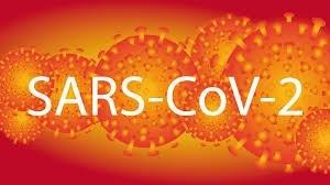 Zdjęcie do wiadomości: Etapy znoszenia ograniczeń związanych z SARS-CoV-2 - II etap