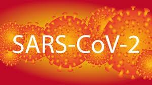 Komórki wirusa w pomarańczowym kolorze z napisem SARS-CoV-2